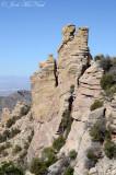 Mount Lemmon area
