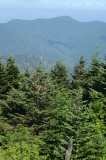 View from summit of Mt. Mitchell