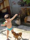 Brincando com o cachorro - 02