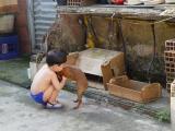 Brincando com o cachorro - 03