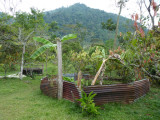The garden at Helmeted Curassow Reserve / RNA Pauxi Pauxi