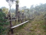 Ticking, I mean seating area, Paramo, Dusky Starfrontlet Reserve/ RNA Colibri del Sol