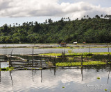 Palakpakin Lake D700_15248 copy.jpg