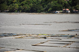 Sampaloc Lake D700_15385 copy.jpg