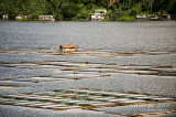 Sampaloc Lake D700_15417 copy.jpg