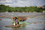 Sampaloc Lake D700_15419 copy.jpg