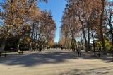 Madrid, Spain D300_27395 copy.jpg