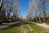 Madrid, Spain D300_27408 copy.jpg