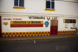 Hand painted signs on a vet shop in Tlachichuca.