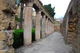 Herculaneum  the ruins of Ercolano - house of Argus