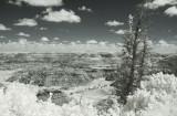 Horseshoe Canyon 2