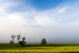 Great Smoky Mountain Landscapes