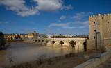 Roman Bridge at Toledo