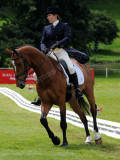 Horse trials7.jpg