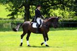 Horse trials8.jpg