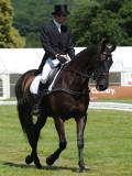 Horse trials11.jpg