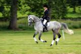 Horse trials13.jpg