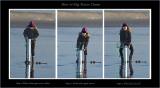_MG_68053 triptych.jpg