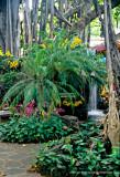 Hawaii_0003-copy.jpg