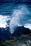Hawaii_0017-copy.jpg