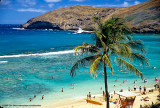 Hawaii_0038-copy.jpg