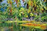 Hawaii_0714-copy.jpg