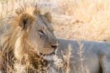 Botswana 2012-1400.jpg