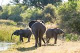 Botswana 2012-1750.jpg
