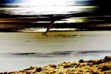 Desert Gloom
