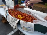 crawfish 005 [1024x768].JPG