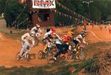 Dixieland BMX (Skip in lavender) SE Quad