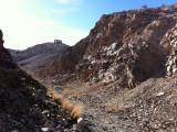 Blair Mill Ruins