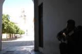 Seville guitarist.jpg