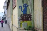 Gato azul Temuco Chile.jpg