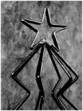january 3Star Tree