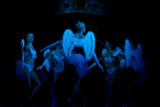Compagnie Danse ta vie, Albi 05/03/2011