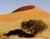 30 Sossusvlei Dunes IV.jpg