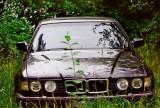 Green   BMW
