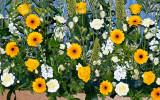 Nave altar flowers