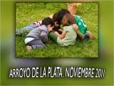 ARROYO DE LA PLATA NOVIEMBRE 2011