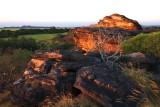 Northern Territory 2009