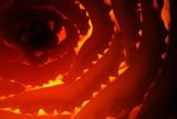 Teeth of Fire