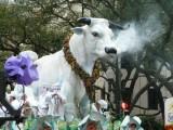 Mardi Gras 2011 - Krewe of Rex
