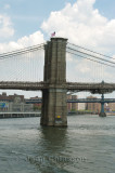 Brooklyn bridge/ New York
