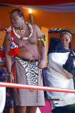 The Colourful Reed Dance Festival 2010 ( The Umhlanga), Kingdom of Swaziland