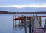 birds on the dock..