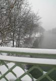 ludovico snow
