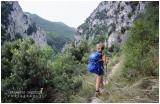 Wild Apennines