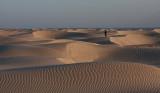 Dunes near Magdalena Bay