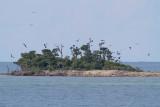 Dry Tortugas NP